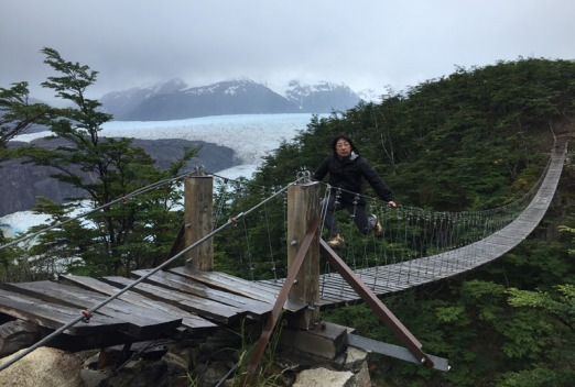 Grey Glacier and suspension bridge